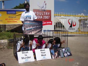 PETA India Activist Protest Outside KFC Chennai