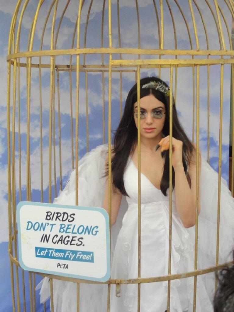 adah-sharma_bird_demo_peta