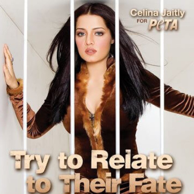 Celina Jaitly Caged … to Help Animals in Zoos