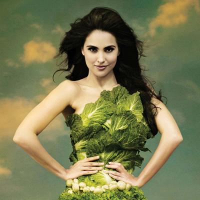 Lara Dutta Vegetarian Ad 2