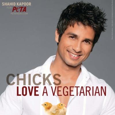 Shahid Kapoor Loves Chicks