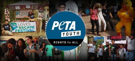PETA Youth: Rights for All