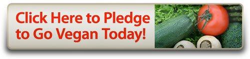 pledge_2D00_to_2D00_go_2D00_vegan_2D00_btn_2D00_501x120.jpg