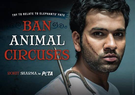 rohit-sharma-anti_2D00_circus-peta-ad.jpg