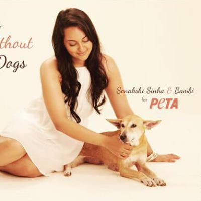 Sonakshi Sinha Speaks Up for Homeless Dogs
