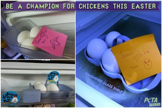 Be a Champion for Chickens This Easter
