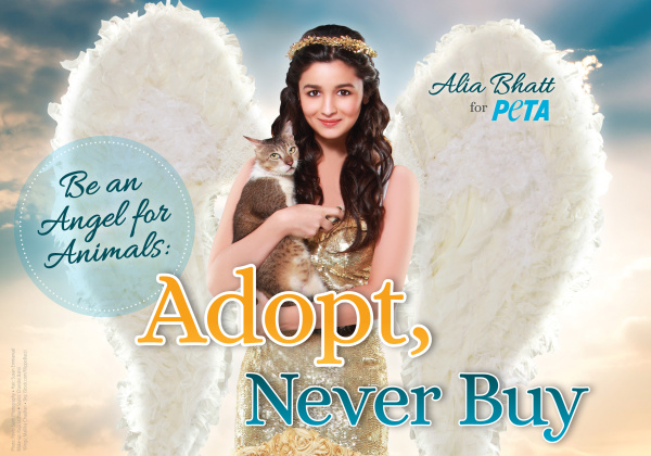 Alia Bhatt Is an Angel for Dogs and Cats