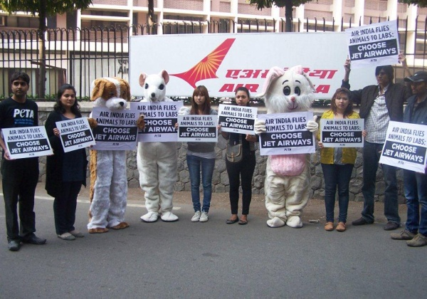 Air India: Cruelty Shouldn't Fly Activist Demonstration in Delhi, India
