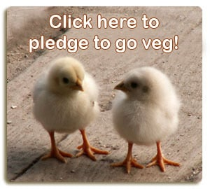 Click Here to Pledge to Be Veg!