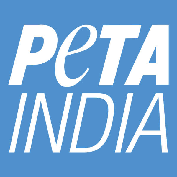 Peta India India S Animal Rights Organisation Peta India