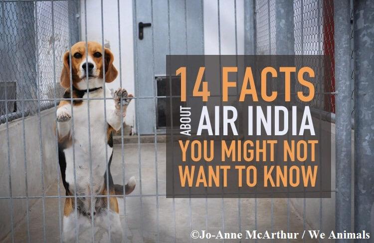 Air-India-goof-ups