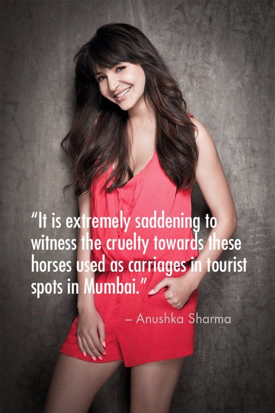 anushka sharma horse tweet for peta