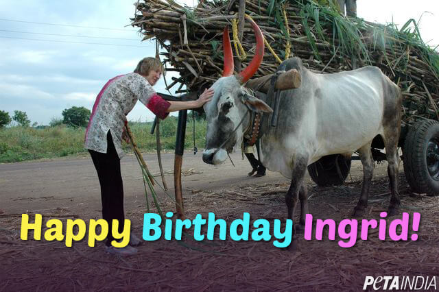 happy-birthday-ingrid