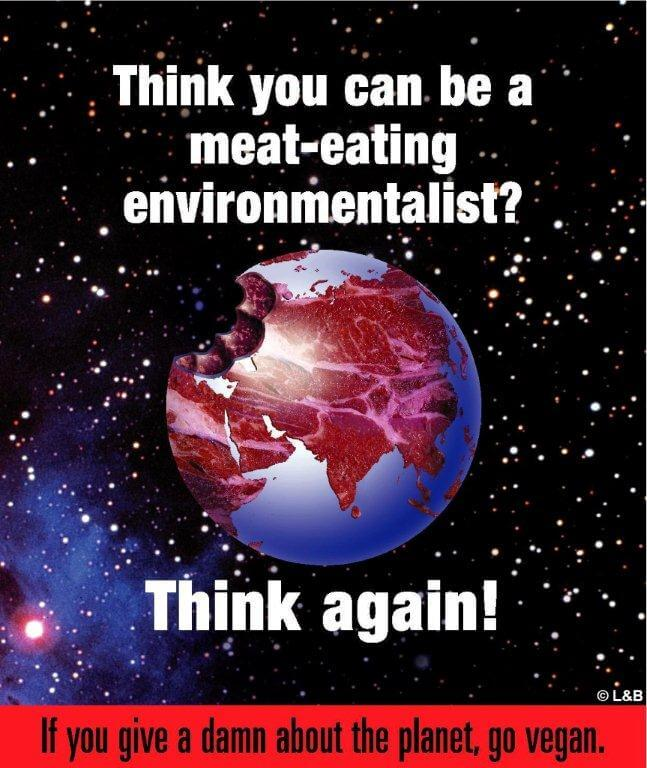 meat-eating-environmentalist