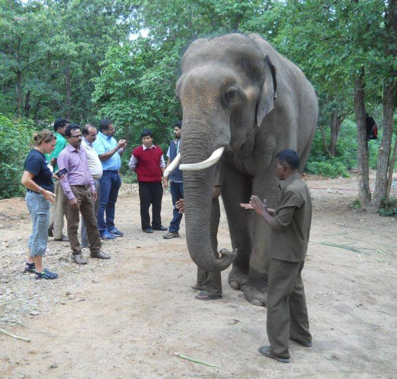 margaret _peta_animal_rahat_with_sunder