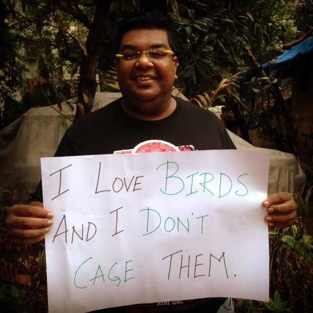 birds_no_cages