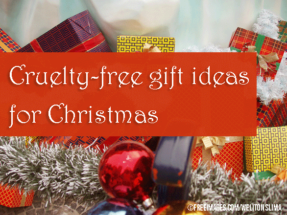 christmas-box-1186035-weliton-slima-freeimages