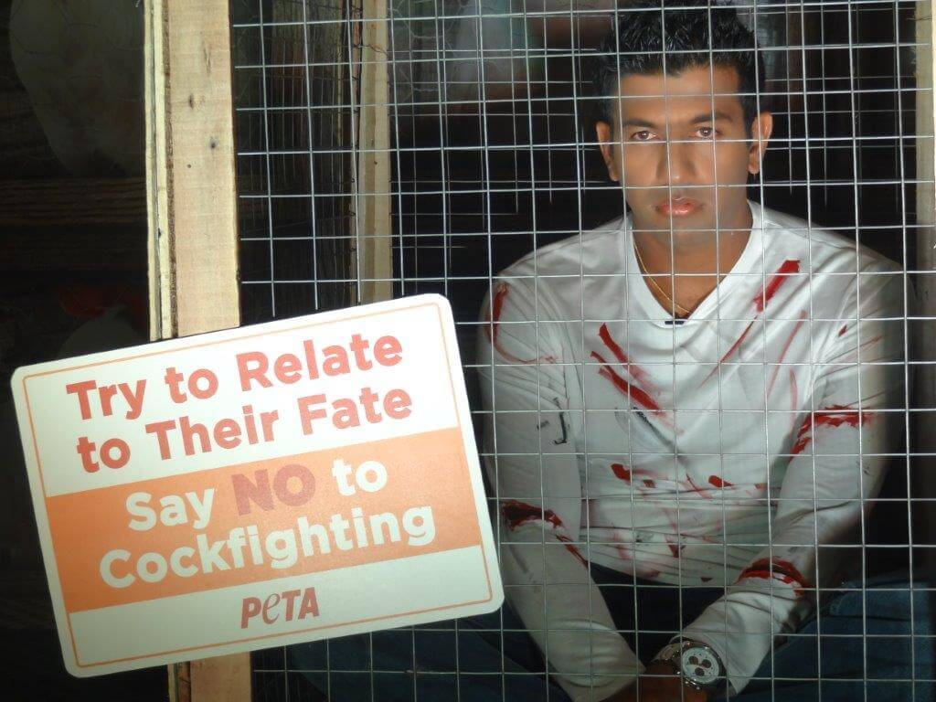 Rohan Bopanna caged himself as part of PETA India's campaign against cockfighting.