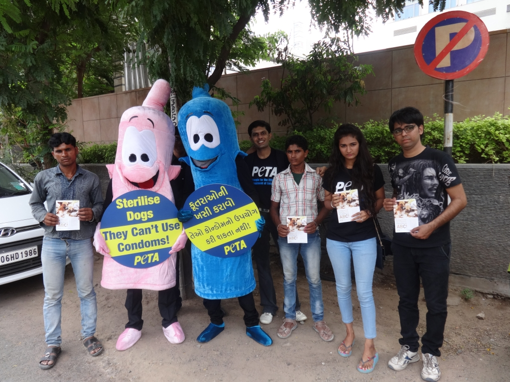 Condom demo - ahmedabad 2014