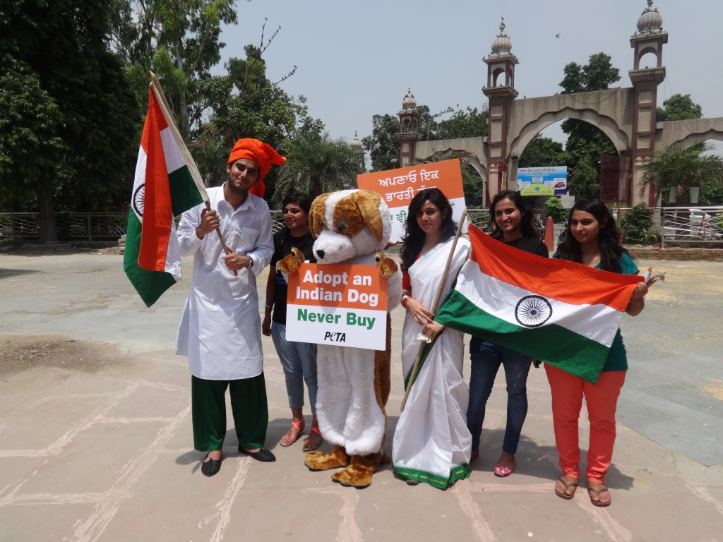 Independence Day Demo 2014- Amritsar