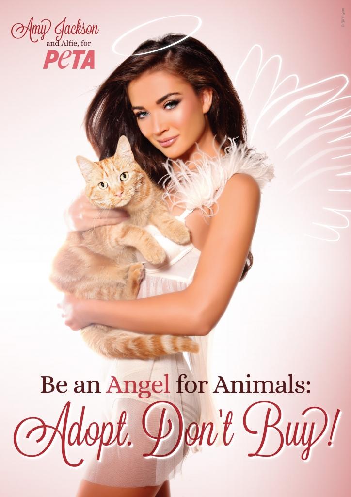 Amy Jackson Angel Ad_INDIA_FIN_vert300