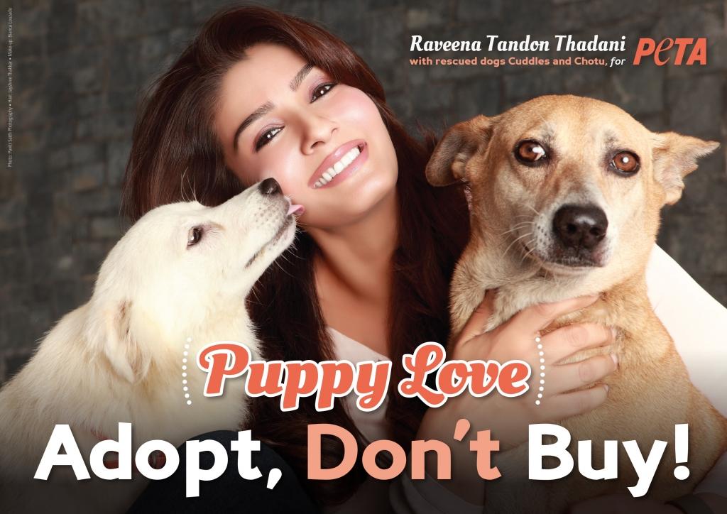 Raveena Tandon Thadani_Adopt_FINAL300