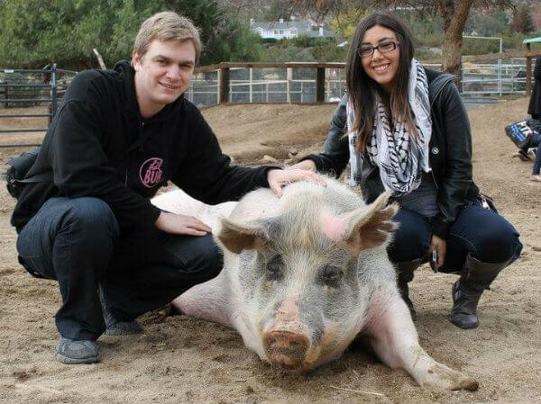 joel-rachelle-pig