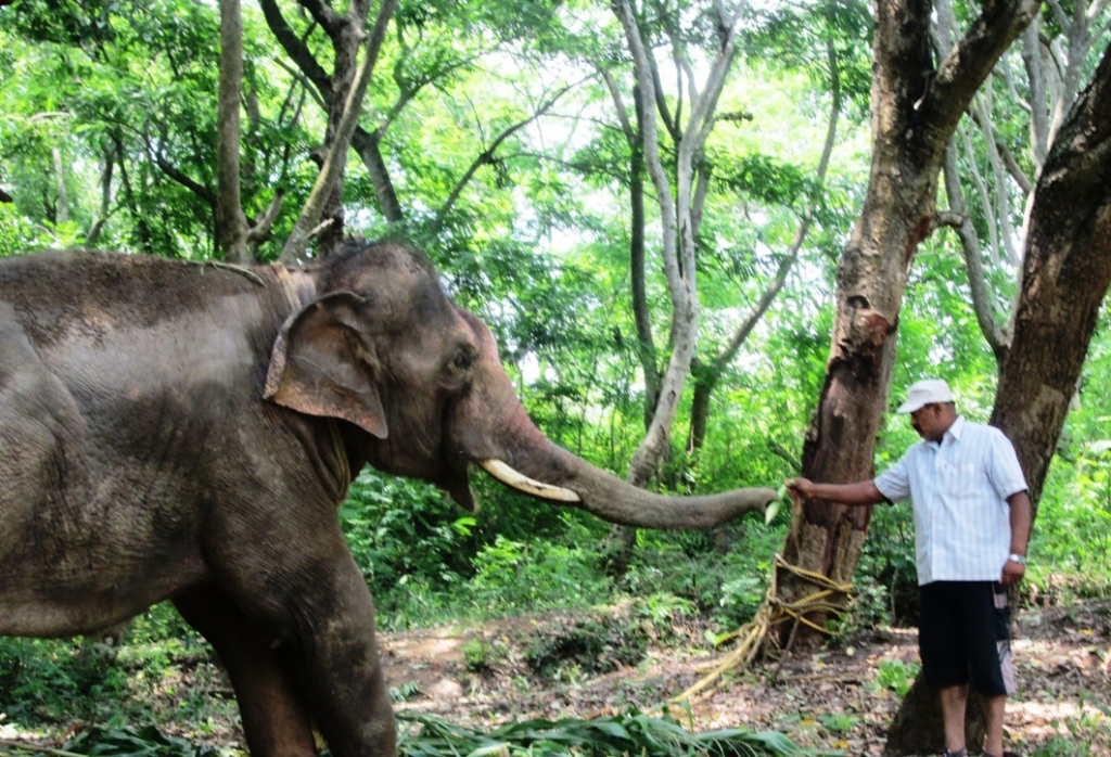 14 pic of sunder journey feature