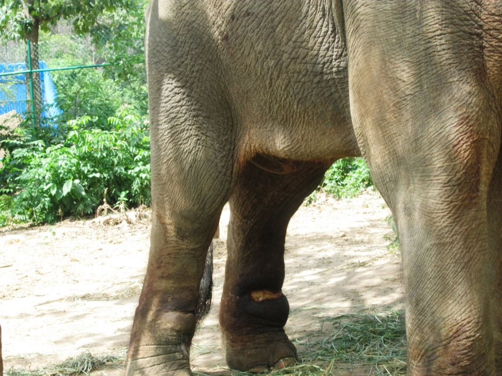 15 pic of sunder journey feature
