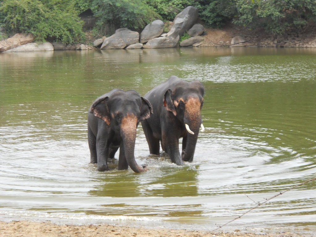 16 pic of sunder journey feature