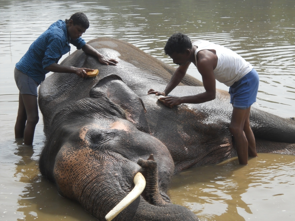 18 pic of sunder journey feature