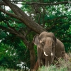 19 pic of sunder journey feature