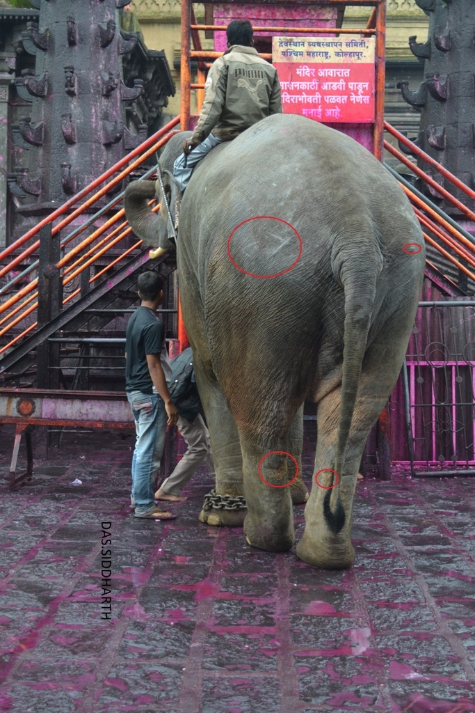 4 pic of Sunder journey feature