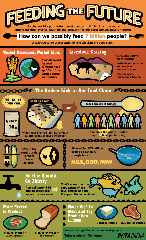 InfographicFeedingTheFuture-PETAIndia