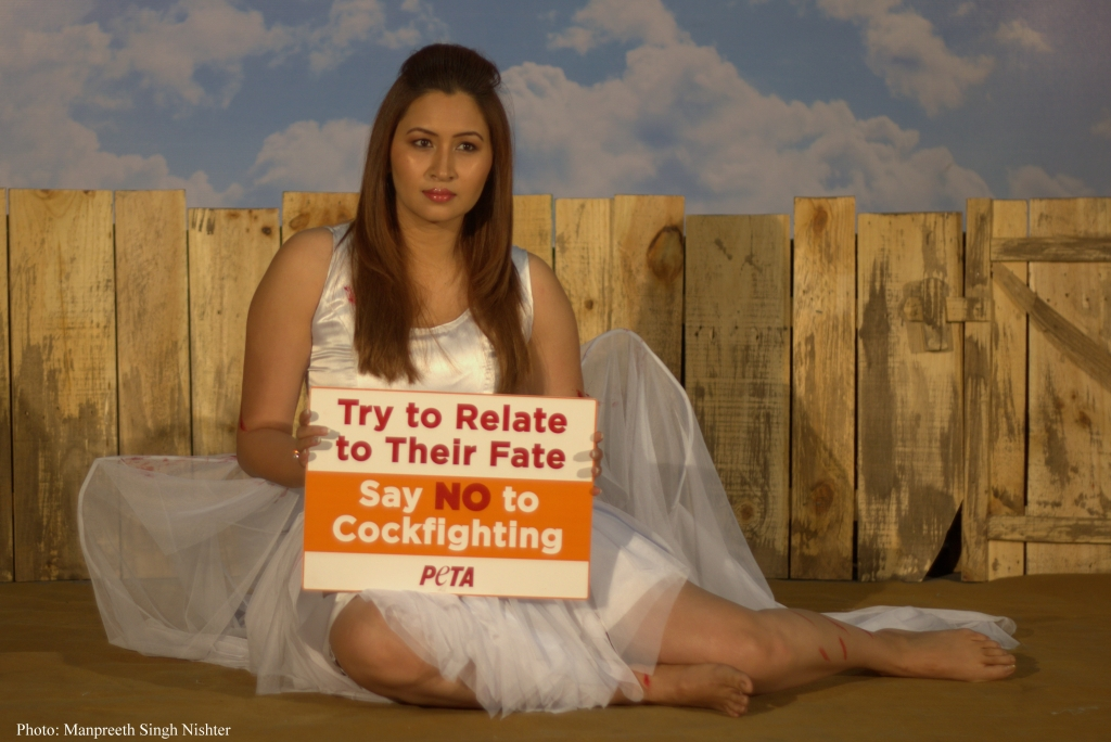 jwala gutta cockfighting press shot - by manpreet