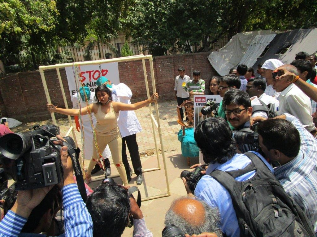woman experimented on demo photo - delhi 23 april 2015 (3)