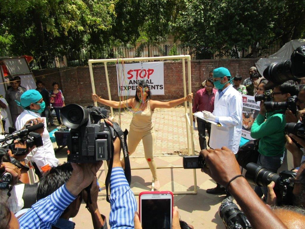 woman experimented on demo photo - delhi 23 april 2015 (4)