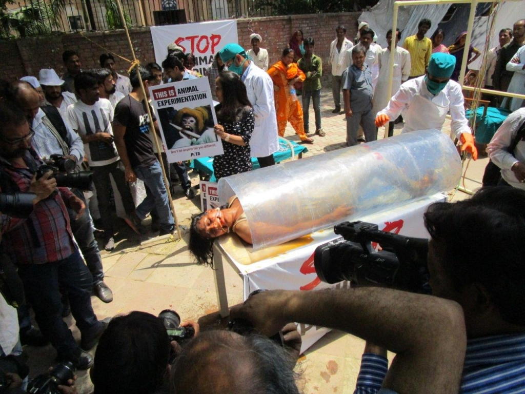 woman experimented on demo photo - delhi 23 april 2015 (5)