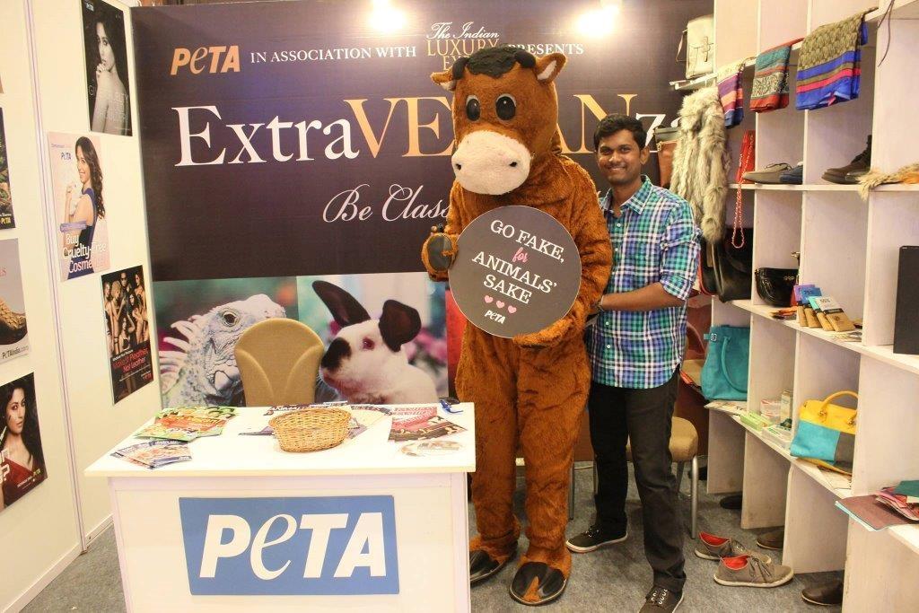 PETA's cow mascot with volunteer Niranjan - Photo credit to Prashanth Mariappan