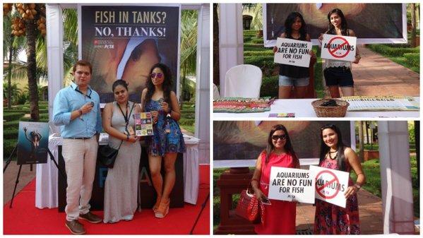 india beach fashion week collage