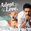 Akhil Akkineni Melts Hearts With Animal Adoption Campaign