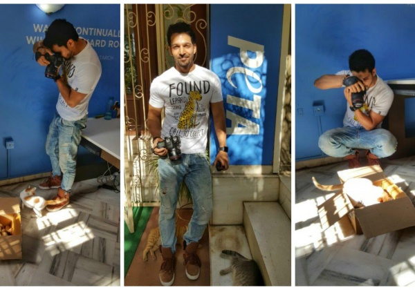 Harshvardhan Rane wants these kittens adopted!