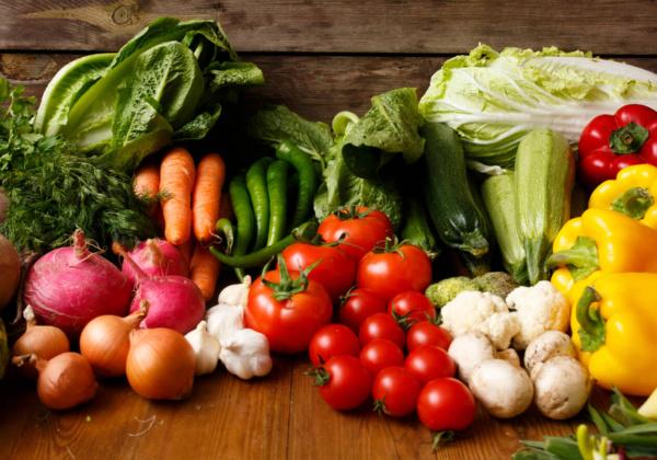 Vegetarian/Vegan Starter Kit