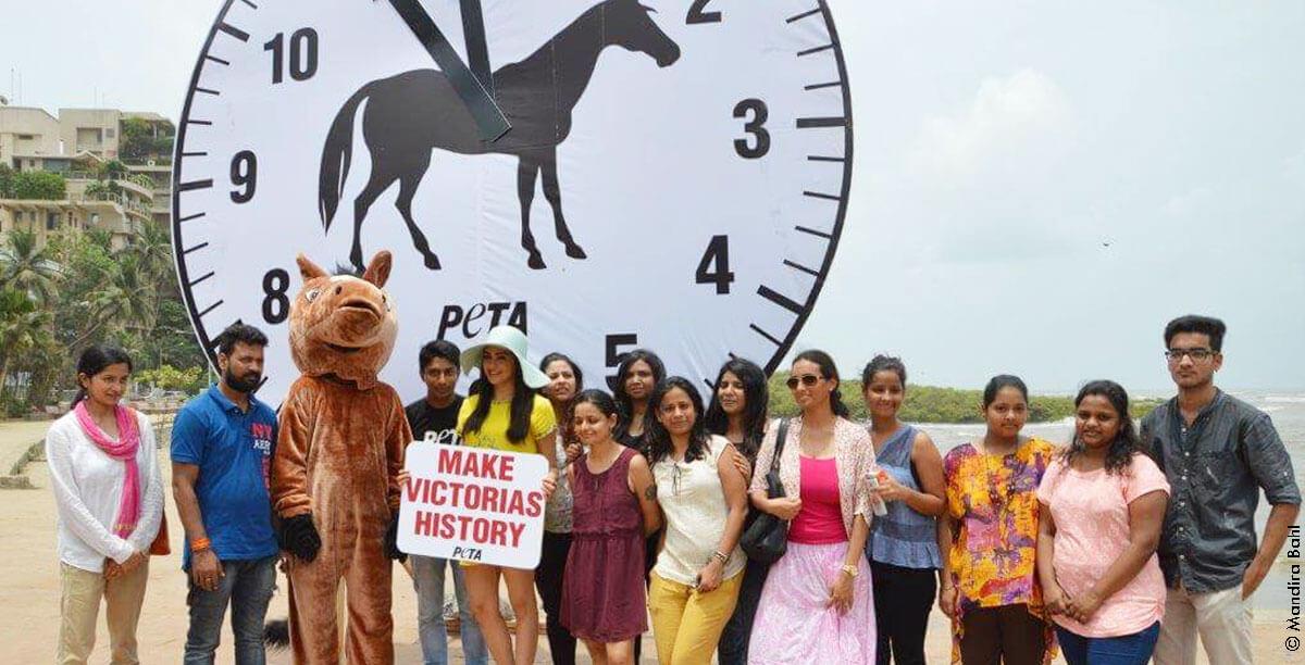 PETA-India-Adah-Sharma-Horse-Carriage-Demo