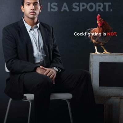 Rohan Bopanna Slams Cockfighting in New Ad