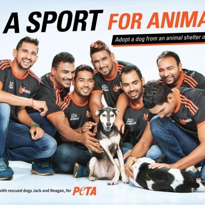 Pro Kabaddi Team U Mumba Encourages Adoption Of Homeless Dogs