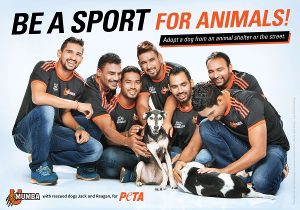 Pro Kabaddi Team U Mumba Encourages Adoption Of Homeless Dogs