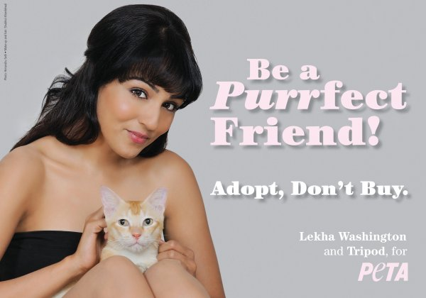 Lekha Washington Asks Fans to Adopt Homeless Animals