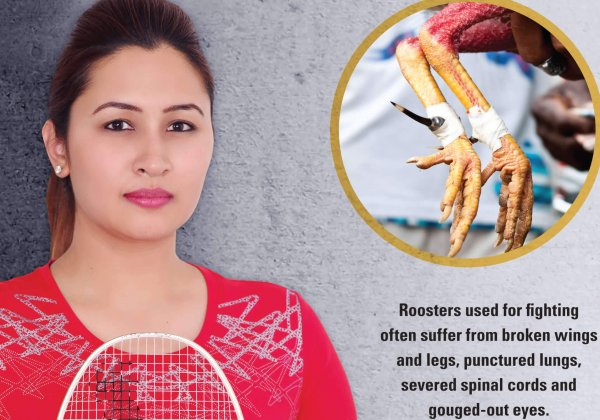 Badminton Star Jwala Gutta Says NO to Cockfighting
