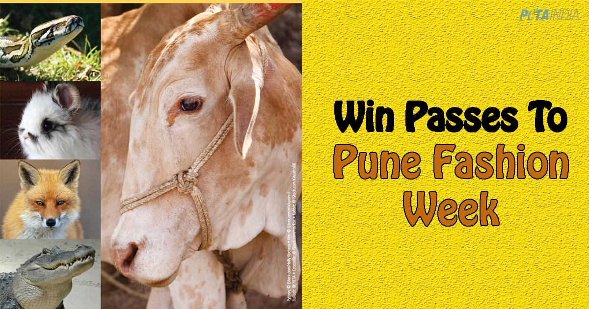 Win Passes to Pune Fashion Week